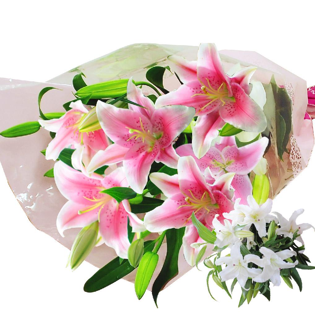 産地直送 百合15輪の花束