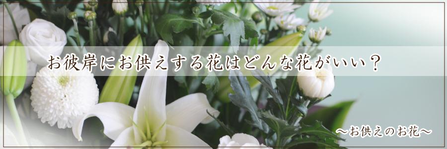 お彼岸にお供えする花はどんな花がいい?