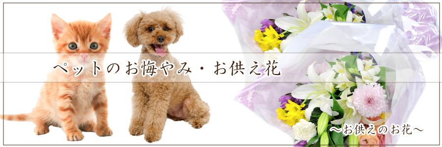 ペットのお悔やみ・お供え花