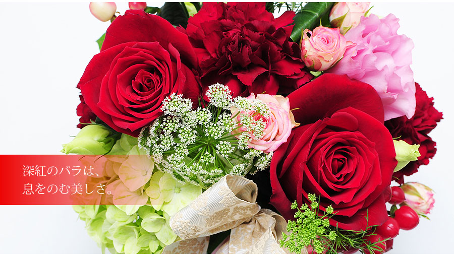 花言葉は花言葉は、「情熱」「愛情」「あなたを愛する」