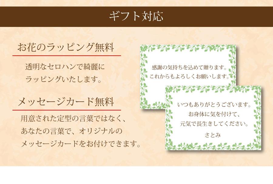 オリジナルのメッセージカードをお付けできます。