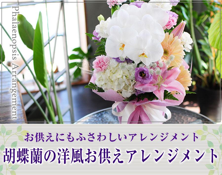 胡蝶蘭の洋風アレンジメント。お祝いにも、お供えにもお使いいただけます!