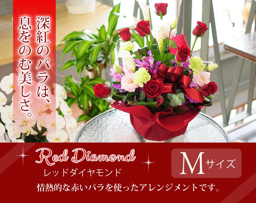 レッドダイヤモンドMサイズ