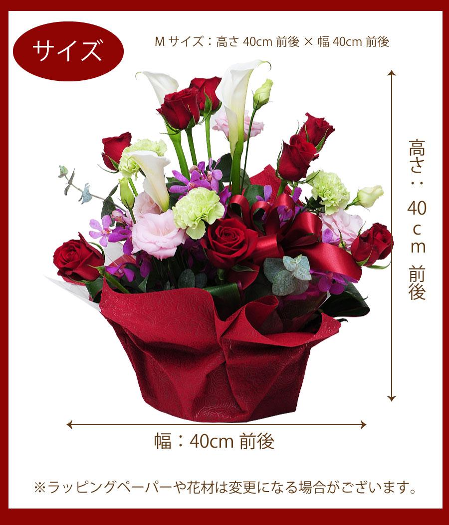 Mサイズ:高さ40cm前後×幅40cm前後
