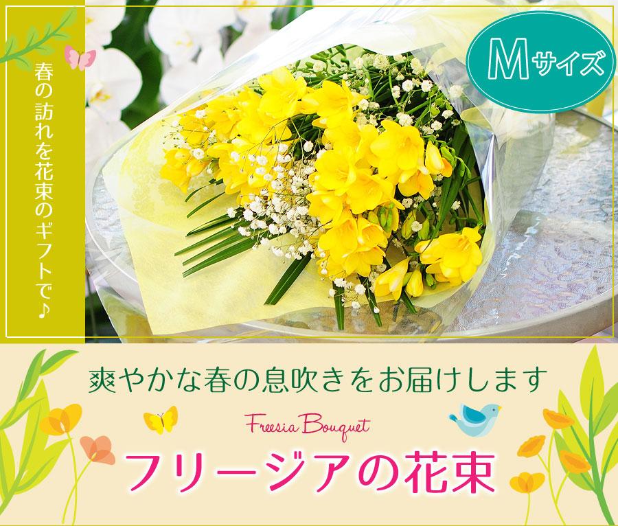 春の訪れを花束のギフトで♪爽やかな春の息吹きをお届けします。フリージアの花束 Mサイズ。