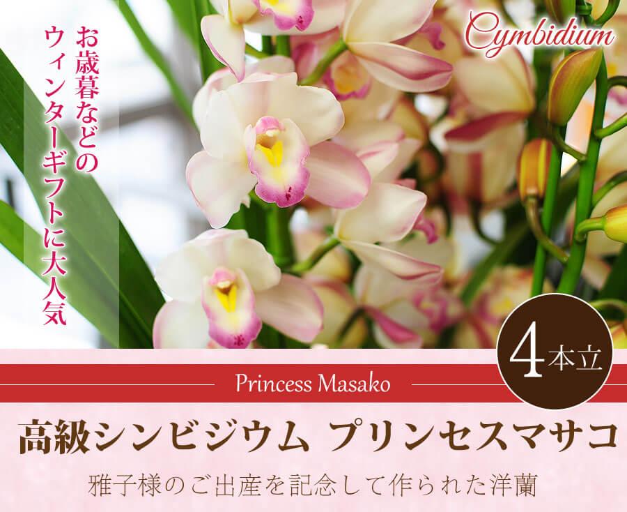 お歳暮などのウィンターギフトに大人気 高級シンビジウム プリンセスマサコ 4本立。雅子様のご出産を記念して作られた洋蘭。