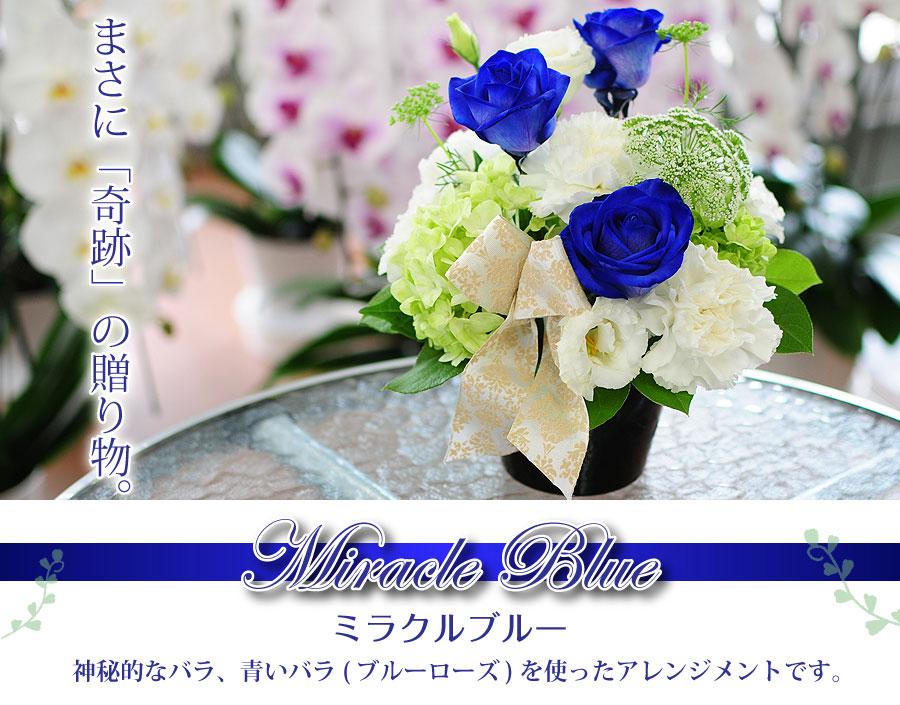 神秘的な青いバラを使ったアレンジメント