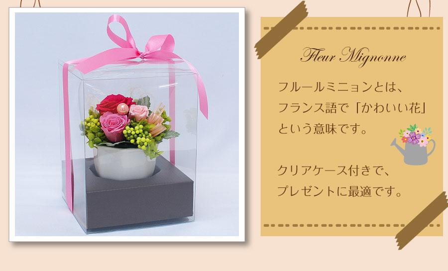 フルールミニョンとは、フランス語で「かわいい花」という意味です。