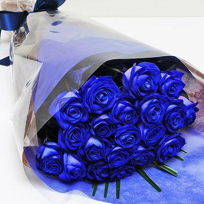 青い薔薇(バラ) ブルーローズ20...