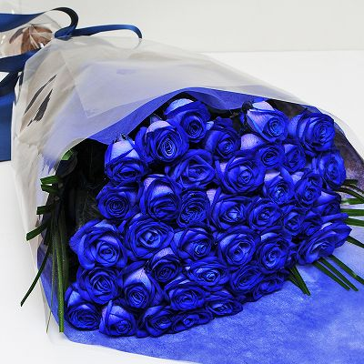 青い薔薇(バラ) ブルーローズ40...