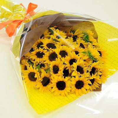 bq_sunflower50