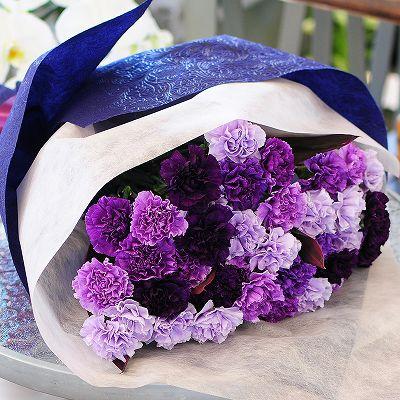 青いカーネーション ムーンダスト30本の花束