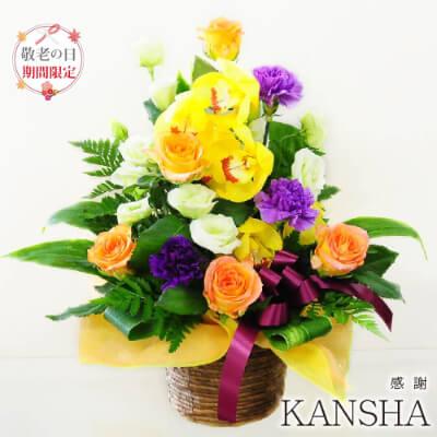 敬老の日アレンジメント KANSHA-感謝-