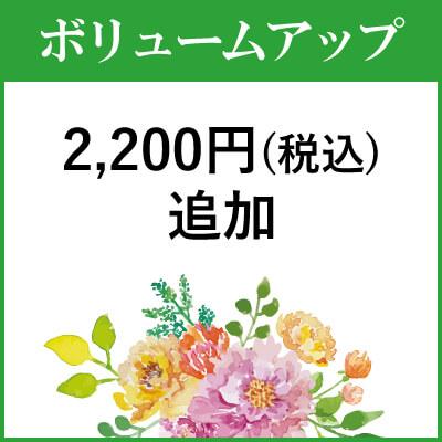 ボリュームアップ2000