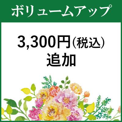 ボリュームアップ3000